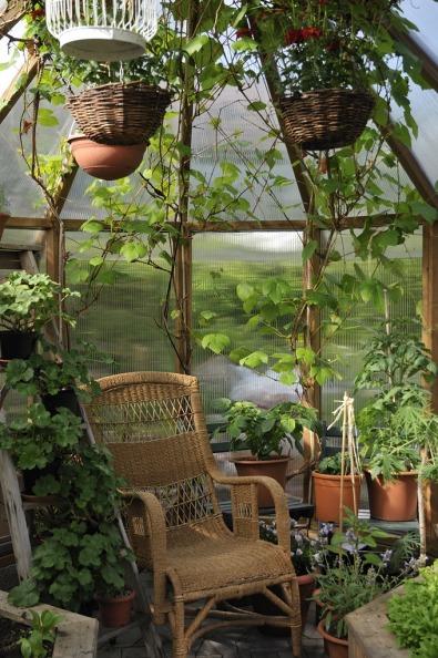 Vilstol i växthus
