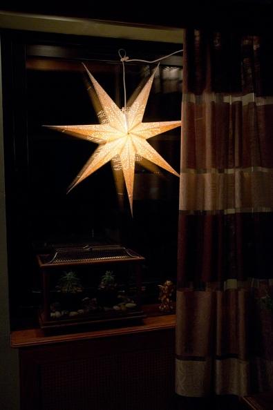 Julstjärna2