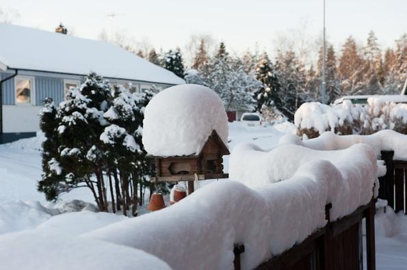 Altan i snö