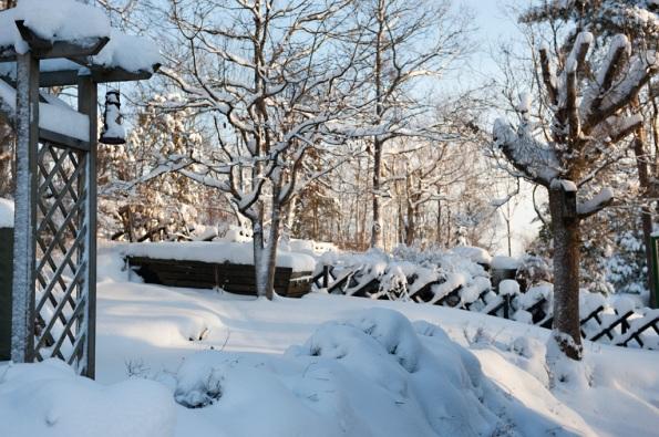 Vinter mot baksida