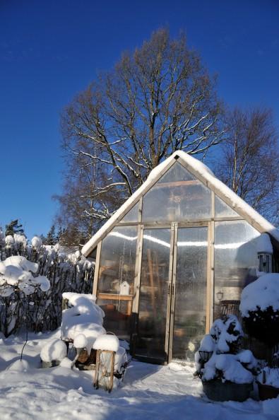 Växthus i snö