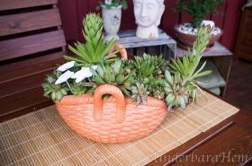 Fetblad-i-keramikkorg