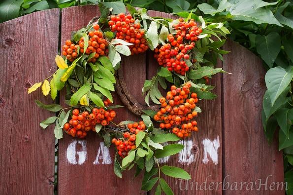 Rönnbär-på-dörr