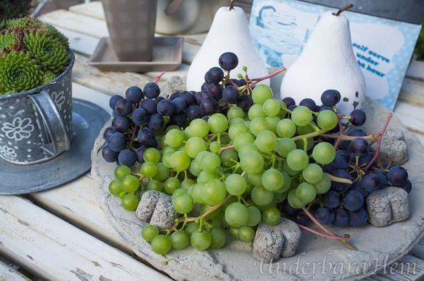 Vindruvor och gelé