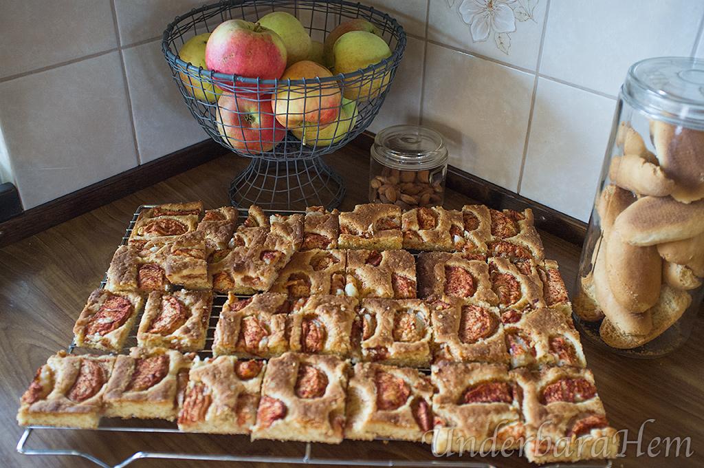 Äppelkaka långpanna recept havregryn