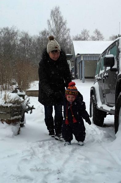Millian-i-snö