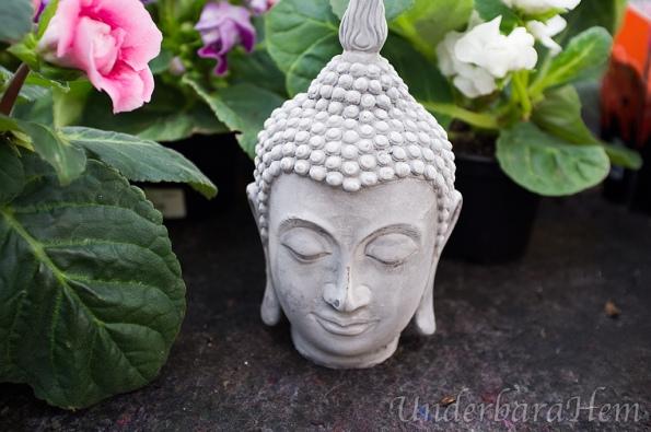 Cramers-Buddha