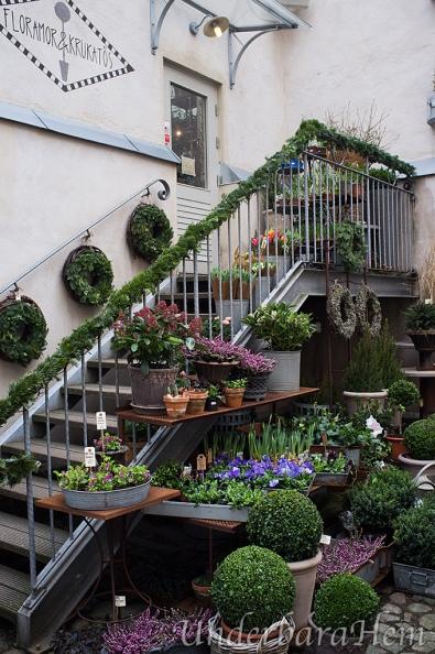 Floramor-och-krukatös