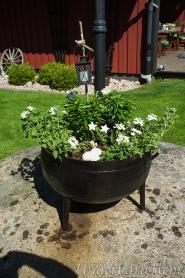 Blommor-i-tvättgryta