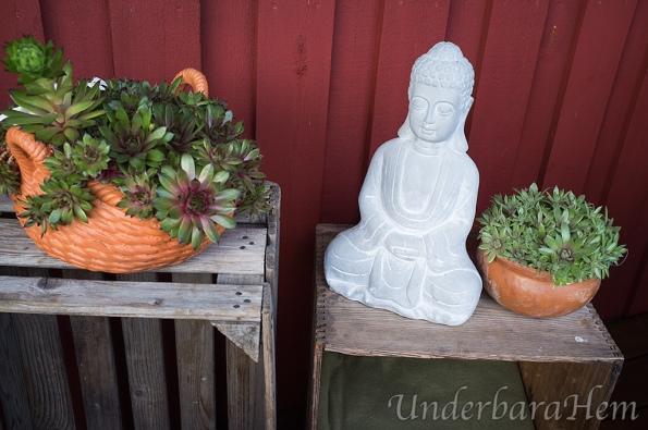Buddha-staty