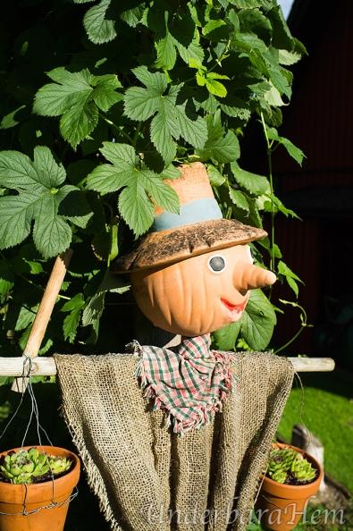 Trädgårdsmästare-2014-aug