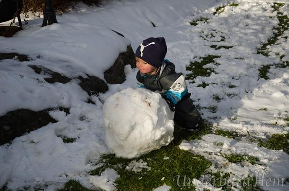 Millian-rullar-snöboll