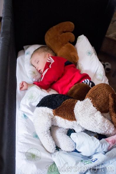 Milton-sover