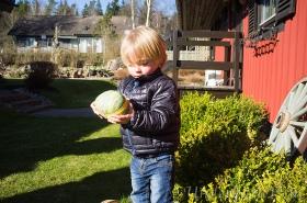 Millian-har-hittat-ett-ägg-2015