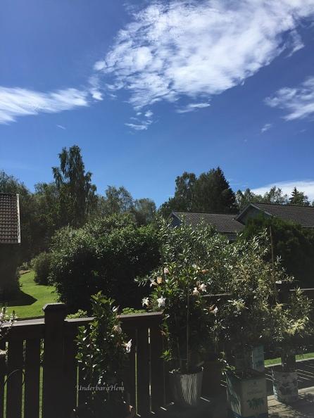 Blå-himmel-från-altanen
