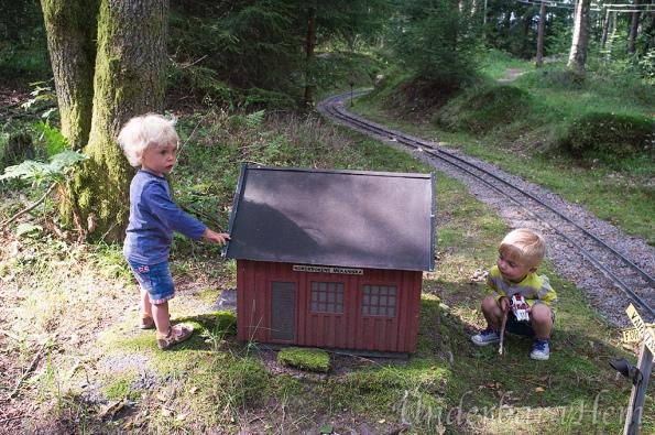 Borås-ånglokssällskap10