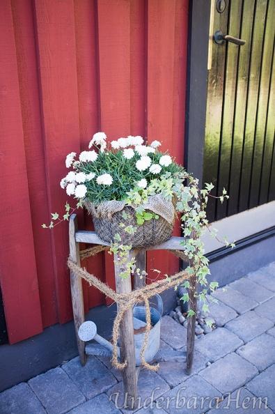 Blommor-vid-förrådsdörren