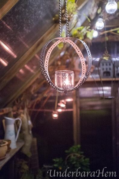 Ljus-i-växthuset