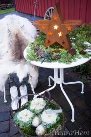 Rostig-stjärna2015