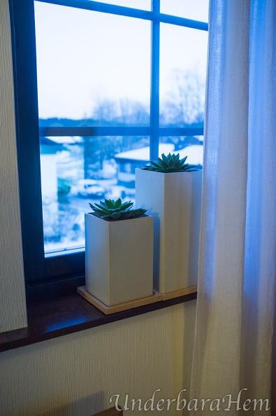 Nya-blommor-i-tvrummet