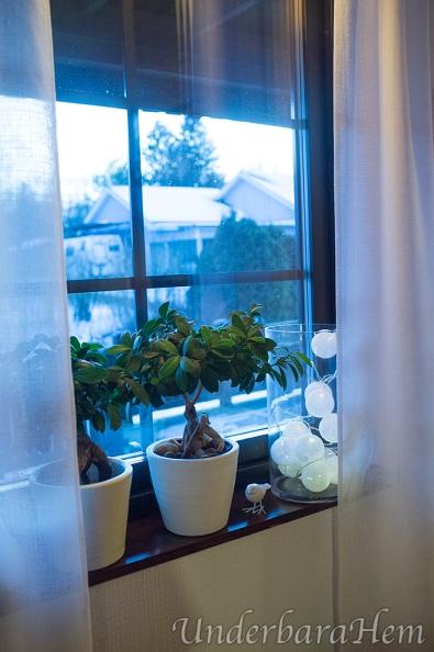 Nytt-i-vardagsrums-fönstret