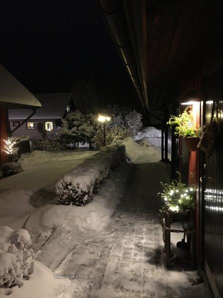 Snö-2016-2