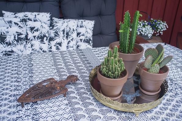 Kaktusar-på-altanen