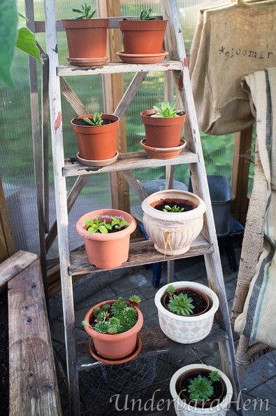 Planteringsstege