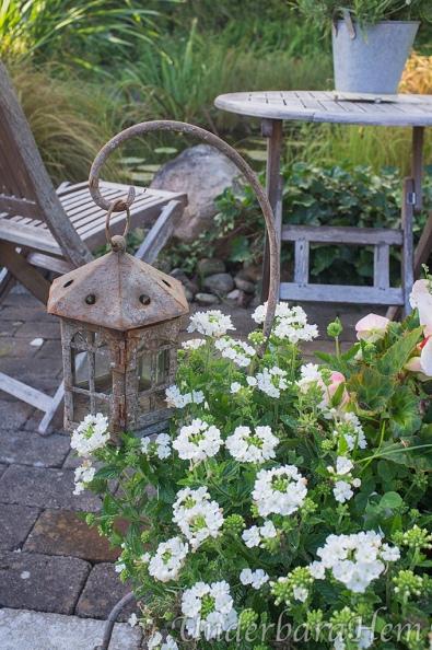 Blommor-vid-dammen
