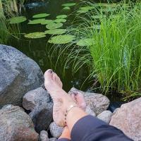Augustikväll och sol, njuter vid dammen!